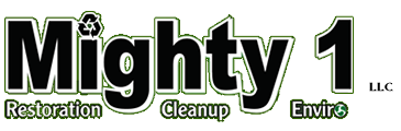 Mighty 1 Junk Removal Wisconsin